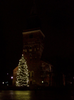 turku_cathedral_cristmastree4.jpg
